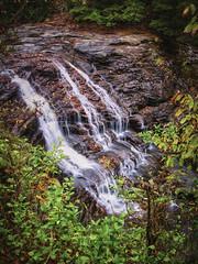 Tubb LogoDSCN2695 (StantonTubb) Tags: fallcreekfalls landscapes nature outdoors