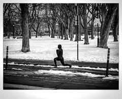La Mante. (francis_bellin) Tags: 2018 noiretblanc streetphoto blackandwhite street sport monochrome rue montréal mars froid photoderue neige