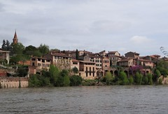 (*) Bords du Tarn à Albi (Gé DEVEAU) Tags: france rivière albi tarn occitanie