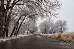 April 21, 2018 - A cold, wet morning at the Rocky Mountain Arsenal. (Tony's Takes)