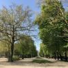 Brussels Park (toralux) Tags: blog blogg belgia belgium brussels brussel