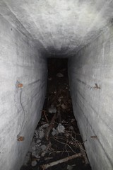 DSC_6817 (PorkkalaSotilastukikohta1944-1956) Tags: bunkkeri bunker abandoned hylätty adfsbunkkeri adfsbunker adfs exploring bunkerexploring porkkala porkkalanparenteesi porkkalanparenteesibunkkeri degerby inkoo degerbybunkkeri