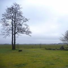 end winter / early spring (Adfoto) Tags: landscape landschap trees bomen tree boom sky lucht