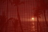 Sunset through blinds (steveboer.com) Tags: sunset blinds screen brick red wall light texture pattern wallpaper outdoor noperson building retro desktop design line orange abstract large fabric hawaii kona stripe mesh background material water sun dark door bright textile repetition