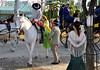 Bien trop haut (maxguitare1) Tags: cheval caballo cavallo horse cavalier andalousie seville andalouse jinete rider nikon espagne