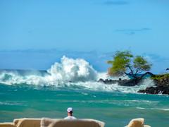 Wave Crash (Eshke04) Tags: wave crash coast beach tropical hawaii water ocean splash man blue sky tree rock pacific