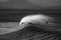 black Byron (ash.osst) Tags: ocean underwater photography underwaterphotography aboveandbelow surf natgeo roadtrip adventure natgeoyourshot nature conservation landscape oceanscape ausgeo scubadiving scuba marinelife ashostrofski canon nauticam surfphotography