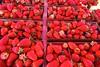 Strawberries, Farmers' market, Santa Cruz (ali eminov) Tags: santacruz california farmersmarket fruits strawberries