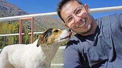Amizade - Chile (Tiago Nomack) Tags: chile férias osorno puerto varas frutillar cajon del maipo andes cordilheiras