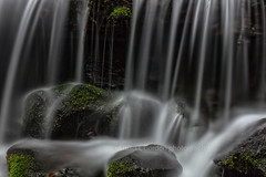 Waterfall Landing (chasingthelight10) Tags: rivers landscapes travel events photography forests waterfalls places washingtonstate olympicnationalpark solduc solducriver otherkeywords river riparianhabitat