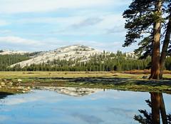 High Yosemite Reflections, Tuolumne Meadows 2015 (inkknife_2000 (9 million views)) Tags: easternsierranevada yosemitenationalpark california usa landscapes mountains snow snowonmountains dgrahamphoto creek mountainpond rocks waterreflections calmwater tuolumnemeadow spring granitedomes skyandclouds