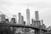 Skyline (Avaiyang) Tags: newyork newyorkcity skyline brooklynbridge city brooklyn bridge sea eastsea nycphotographer newyorker manhattan nyclife newyorkworld oneworldcenter dumbo newyorklife nycityworld ny