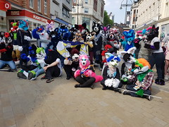 """Leeds furmeet May2018 • <a style=""""font-size:0.8em;"""" href=""""http://www.flickr.com/photos/97271265@N08/42204097102/"""" target=""""_blank"""">View on Flickr</a>"""