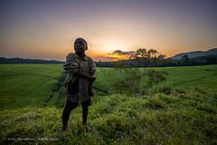 Kids on Ankole Tea Plantation, Sunset, Uganda (Catherine Gidzinska and Simon Gidzinski) Tags: 2017 africa uganda igara westernregion ug sunset ngc kid boy portrait tea teaplantation rural hills