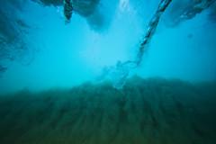 IMG_1597A (Aaron Lynton) Tags: wave waves shorebreak cano canon 7d maui hawaii summer fu fun schools out spl