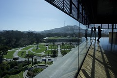 View from de Young Museum (gsmper) Tags: sanfrancisco deyoungmuseum reflections building landscape academy sciences california sunlight shadow sony zeiss golden gate park