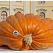 Ludwigsburg - Kürbisausstellung (pumpkin show)