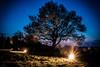 churchyard at night (stuartlawrencephotography) Tags: graveyard tree grave 70d canon light lens flare night darek longexposure kit 1855mm