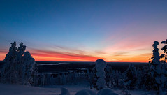 Lapland sunset (Mathieu Pierre) Tags: lights lapland canon 7dmark2 7dmarkii sigma14mmf18 sunset trees winter nature frost arctic hill finland nuit night sky snow landscape