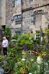 Scotlands Gardens June 2018 -13 (Philip Gillespie) Tags: scotland gardens 2018 nature flowers plants people men women kids children family boys girls vegetables fruit strawberries gooseberries potato roses lettuce shrubs hose green yellow red purple blue white black water urban city canon 5dsr hats berries leaves branches trees plot gnome reflection door wall park dolls nets small tiny beautiful pretty sweet steps stairs bee wasp flight circle street sale buildings inner