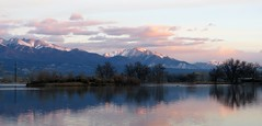 Still Waters (Patricia Henschen) Tags: sunrise morning mountains collegiatepeaks sawatch range clouds reflection trees frantzlake swa statewildlifearea salida colorado mtprinceton mt antero 14ers alpenglow princeton upperarkansasvalley spring lake chalkcliffs