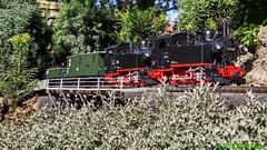 LGB Sächs. VIk's in Doppeltraktion (Stefan's Gartenbahn) Tags: lgb vik 99653 99685 sächsischevik sachsen gartenbahn fgb fgbberlin fgbteam doppeltraktion brücke holzenow mbe