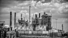 Industry (Ruud.) Tags: ruudschreuder nikon nikond850 d8050 bw zwartwit monochrome blackandwhite blackwhite industrie industry industrieel industrial pijpen buizen pipes antwerpen antwerp