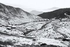 Gnathang Valley - Study 2 (Ravikumar Jambunathan) Tags: nature landscape winter cold weather snow snowfall remote village life sikkim himalayas mountains ravikumarjambunathan india indialand travel