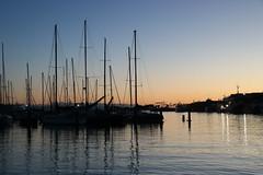 First light (Karen Pincott) Tags: masts yachts water sea napier ahuriri newzealand ahuririmarina winter dawn sunrise