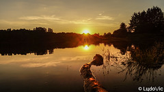 Lac de Butgenbach - 18-07-2018 (2) (Lцdо\/іс) Tags: butgenbach lac lake belgique belgium eastbelgium belgie beauty sunset eifel lцdоіс nature barrage