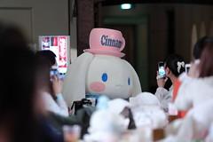 53AL6081 (OHTAKE Tomohiro) Tags: sanriopuroland tama tokyo japan jpn