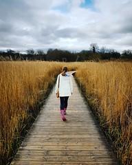 Winter Walk (Aaron_A.K.A_Aaron) Tags: winter walk nature clouds rainclouds reeds golden wife cosmeston wales uk britain wellies moody