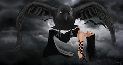 Carried by Crows (Just1sarah) Tags: photography pose danu secondlife crow carried digital