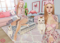 Sleepless (carol.newall) Tags: vanillabae insol amias alme song truth birdy beedesigns theepiphany shinyshabby thechapterfour pink flamingos cat queen secondlife bento catwa ginger cute beauty beautiful sleepless