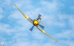 Duxford Pre Flying Legends 2018 (SHGP) Tags: hawker fury mk 2 ii two sea fighter aircraft world war iwm duxford imperail museum flying legends 2016 air show airshow history plane canon eos 700d sigma 18250mm 150500mm vehicle airplane outdoor mustang p51 display team bearcat p36 hawk spitfire 18200mm buchon desert me109 bf109 saturday sky cockpit apache helicopter aviation warbird p47 thunderbolt b25 b5 mitchell cat22 wildcat me1909