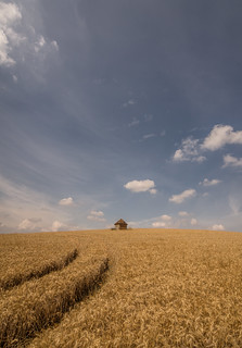 Little hut on the prairie