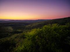 Purple hills... (davYd&s4rah) Tags: landscape mountains sunrise purple sky trees forest hluhluwenp southafrica südafrika nationalpark rza kwazulunatal wideview olympus em10markii m1240mm f28 olympusm1240mmf28 ƒ28 nature summer sun sonnenaufgang sonne perspective photographer foreground dof depth