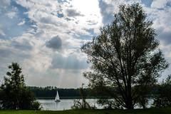 Broek de Nayer (geert.dehert) Tags: boat sailboat sail sailing lake nature naturephotographer naturephotography ilovenature sunset sunsetphotography landscape landscapephotography landscapephotographer clouds cloudporn nikon nikonbelgium