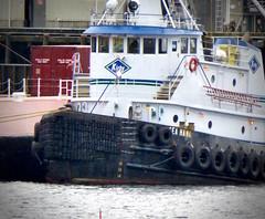 Bow of Tug Sea Hawk (chartan) Tags: tug tugboat boat workingboat hullmark bow ketchikan alaska