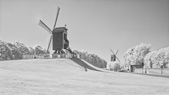 The windmills of Bruges in infrared B&W (Roland B43) Tags: infrared bw brugge windmolens windmills