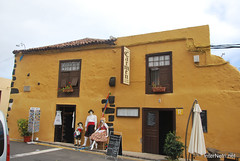 Ікод-де-лос-Вінос, Тенеріфе, Канарські острови  InterNetri  161