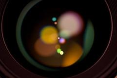 Sigma 50mm (G_HOWDEN) Tags: macromondays 50mm sigma f14 lens photographygear bokeh