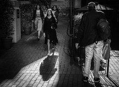 Into the sunlight (Nikonsnapper) Tags: leica m10 summicron 50mm perth street shadows sunlight four highlights detail ladies longhair