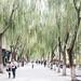 Zhangye Temple of Reclining Buddha
