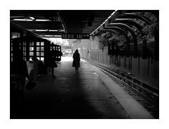 Sandeman (VanveenJF) Tags: boston street bw sandeman sherry station mbta forest hills redline usa man photo massachusetts