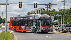 WMATA Metrobus 2018 New Flyer Xcelsior XN40 #3142 (MW Transit Photos) Tags: wmata metrobus new flyer xcelsior xn40