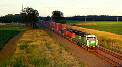25N at Butler Indiana led by an ex Burlington Northern SD60M (Matt Ditton) Tags: sd60m butler indiana train norfolk southern trees outdoors grass