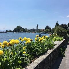 Morges (Iris_14) Tags: morges vaud romandie suisse switzerland schweiz lacléman