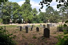 St Mary's Church Grave Yard (Martin Pettitt) Tags: 2018 burystedmunds driedgrass dslr graveyard hotweather july nikond90 norain stmaryschurch suffolk summer uk