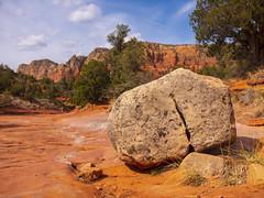 USA - Arizona - Sedona desert (Jelle Bleyenbergh) Tags: usa united states america arizona sedona desert rocks cactus cacti